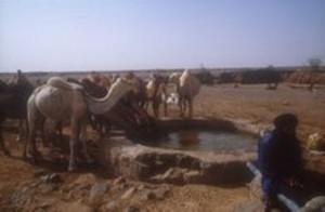 paisaje-sahara