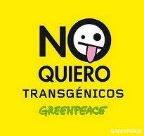 no-a-los-transgenicos