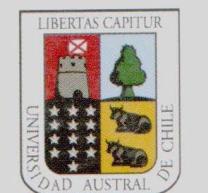 universidad-austral
