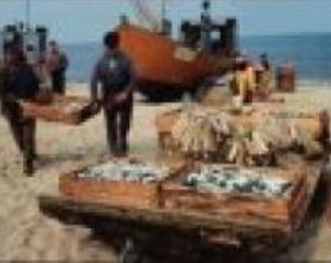 el-acuerdo-de-pesca-entre-marruecos-y-la-ue-es-ilegal