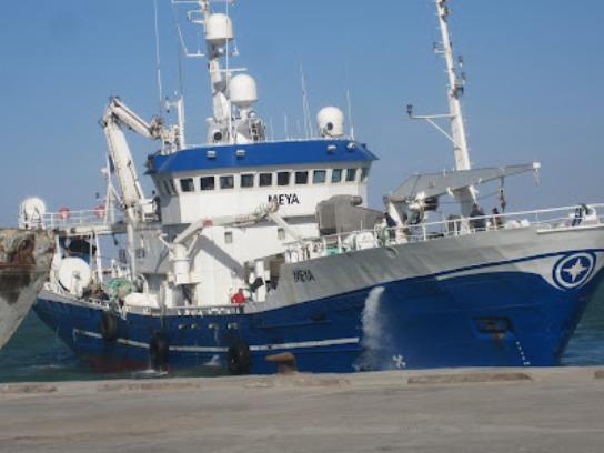barcos-europeos-pescan-ilegalmente-en-el-sahara