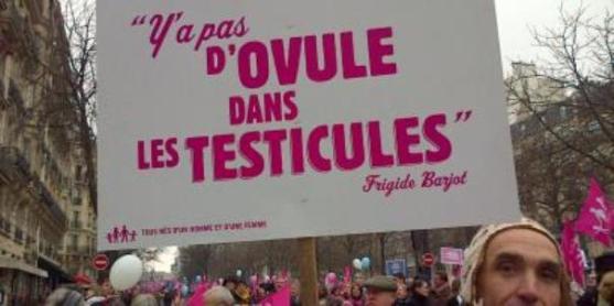 No hay óvulos en los testículos (Foto RFI)