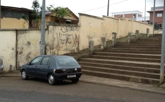 Pintadas en Malabo