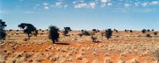 Tierras africanas