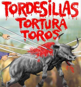 Toro de Fuego en Tordesillas