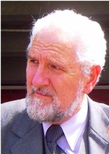 Carlos Pesado Palmieri