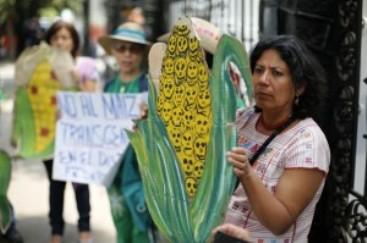 Protesta frente a las oficinas del alto comisionado de la ONU en México contra Monsanto (La Jornada).