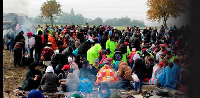 Refugiados sirios en Eslovenia: Fotografía de MSF.